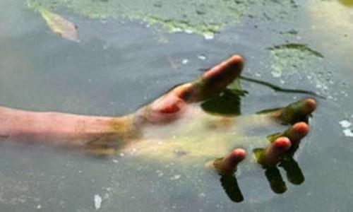 Из пруда вытащили труп неизвестного мужчины