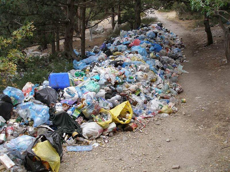 Киев будет принимать львовский мусор