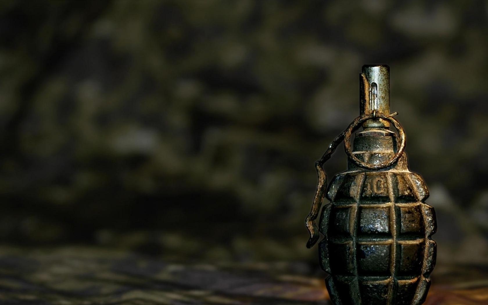 В Донецкой обл. 19-летний парень бросил гранату в собутыльника