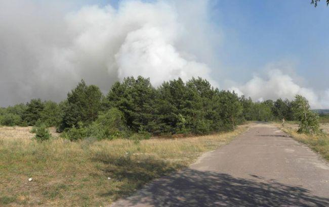 Пожар в Чернобыльской зоне ликвидирован