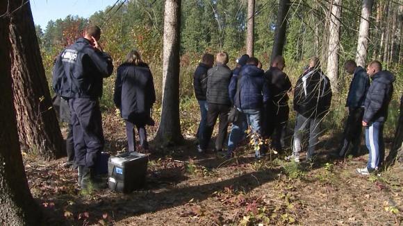 В лесу на Львовщине 38-летний мужчина задушил пенсионерку