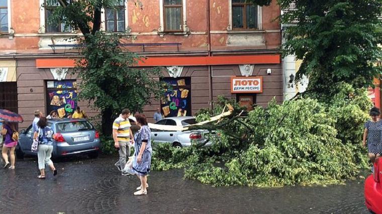 В Ужгороде ураган валил деревья на машины и дороги (ФОТО)