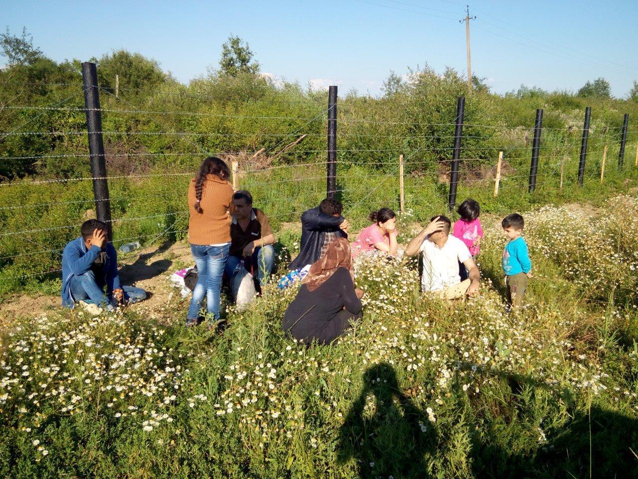 На Закарпатье задержали 9 нелегальных мигрантов из Афганистана