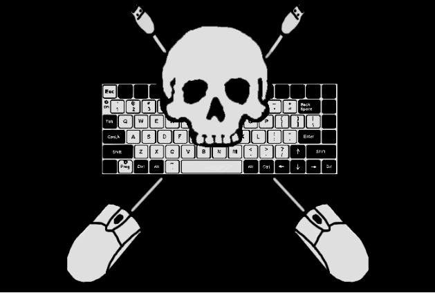 В Польше задержали украинца по обвинению в интернет-пиратстве на $1,3 млрд