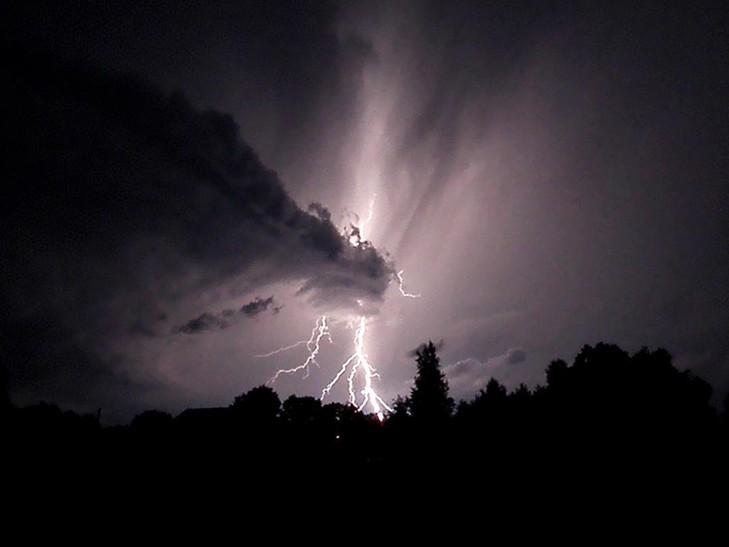 «Гнев небесный» В сети показали последствия мощного урагана в Москве