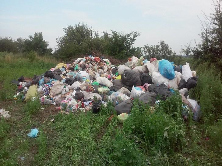 Как на Львовщине просто в поле выбрасывают мусор (ФОТО, ВИДЕО)