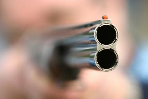 На Львовщине браконьер поймал кабана, а правоохранители — его