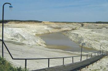 Экологическое бедствие: тонны мертвой рыбы выбросило на берег озера на Волыни