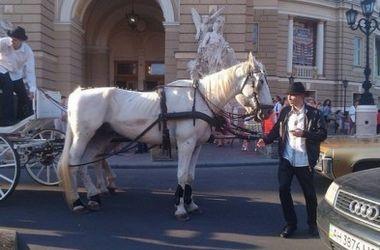 В центре Одессы двое девушек пустили галопом лошадей через толпу