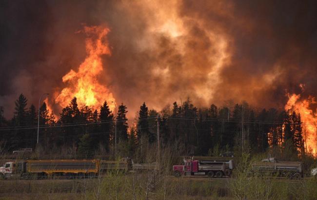 В Калифорнии из-за пожаров эвакуируют свыше 80 тыс. человек