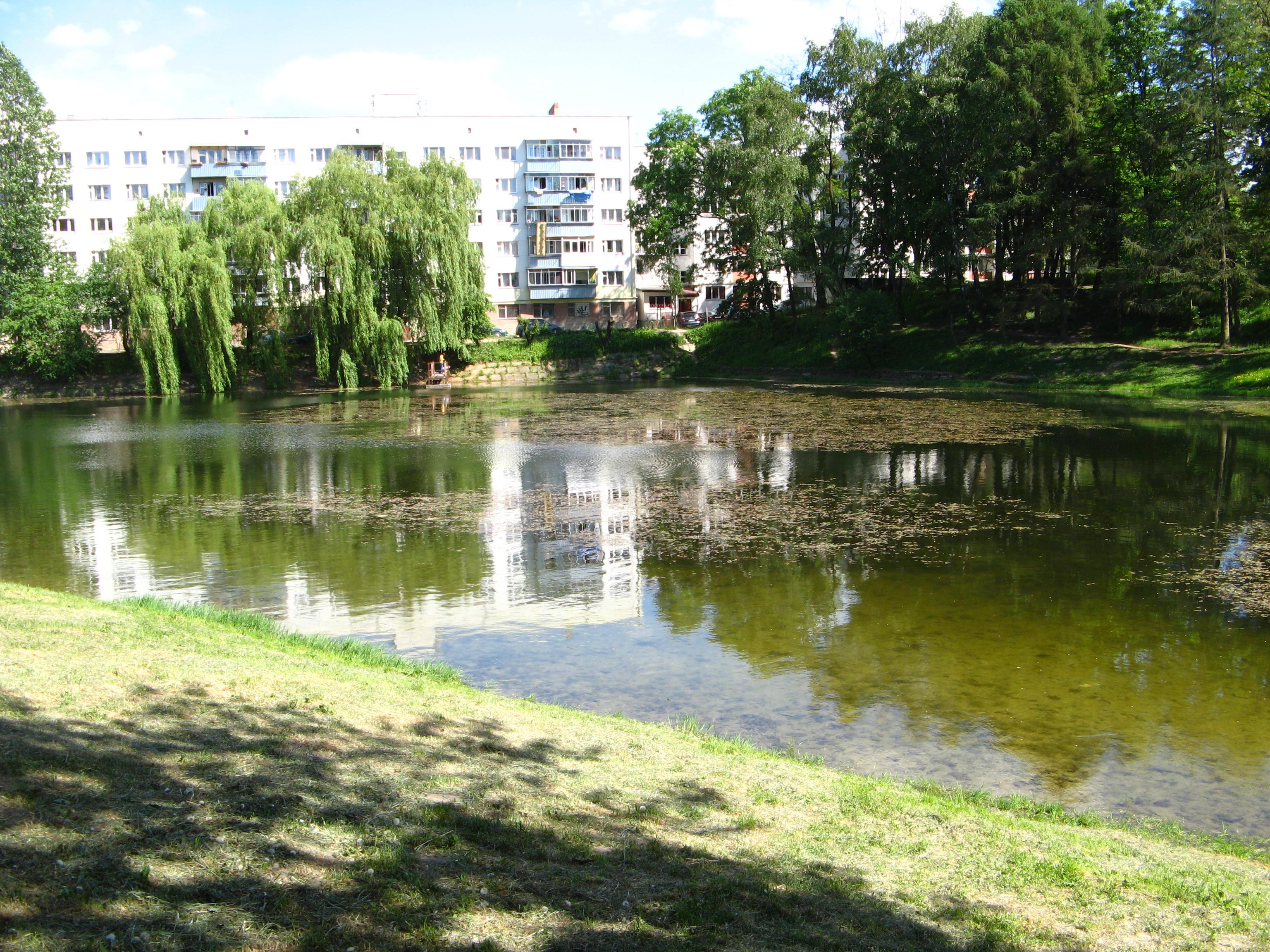 На территории одного из парков Львова утонул мужчина