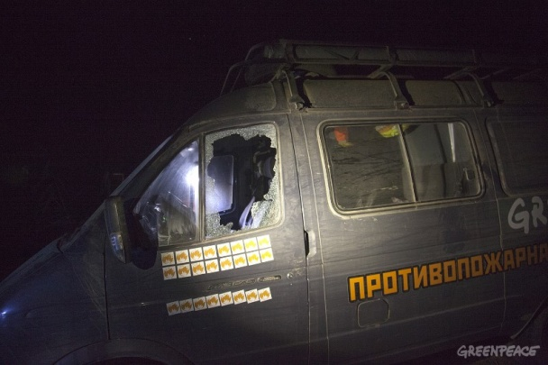 В России жестоко избили активистов Greenpeace