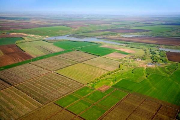 Торговля землей под Киевом. Цена: $ 1,5 тыс. за гектар