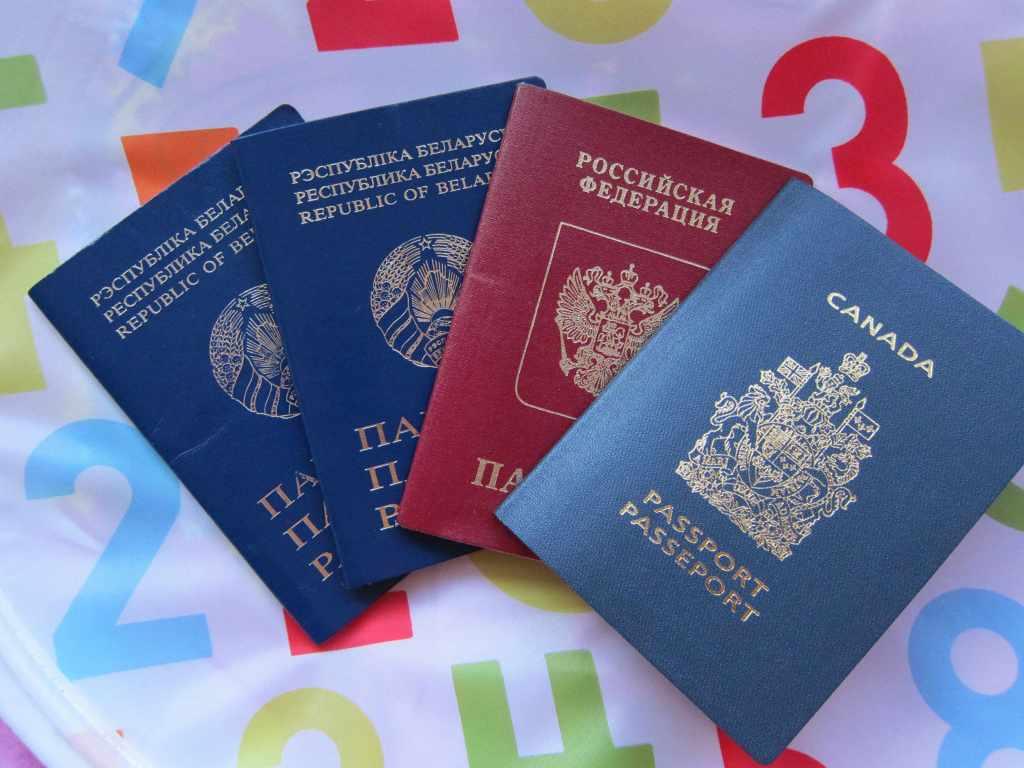 В Раде предлагают автоматически лишать гражданства за паспорт другой страны