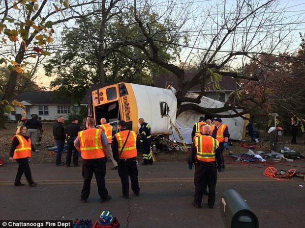 Ужасная трагедия: школьный автобус влетел в дерево. Десятки пострадавших. Родители в горе (ФОТО)
