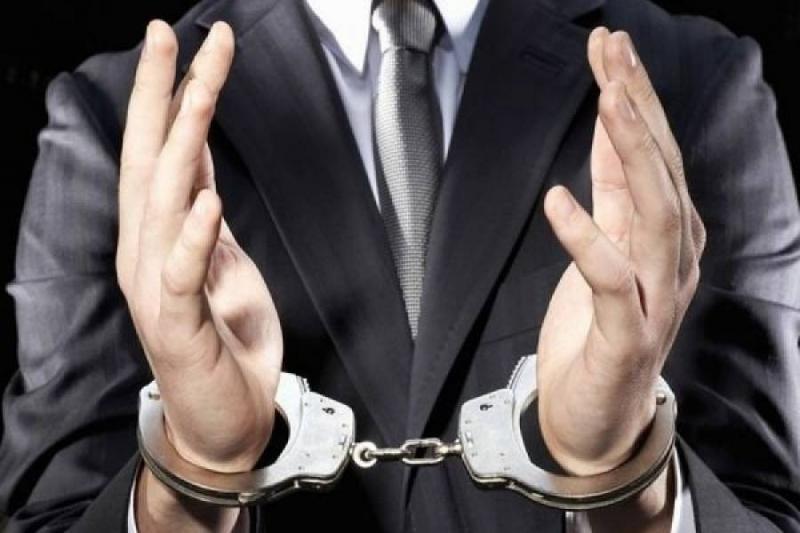 Коррупционеры в шоке! В Раду внесли законопроект о пожизненном заключении за взятку (видео)