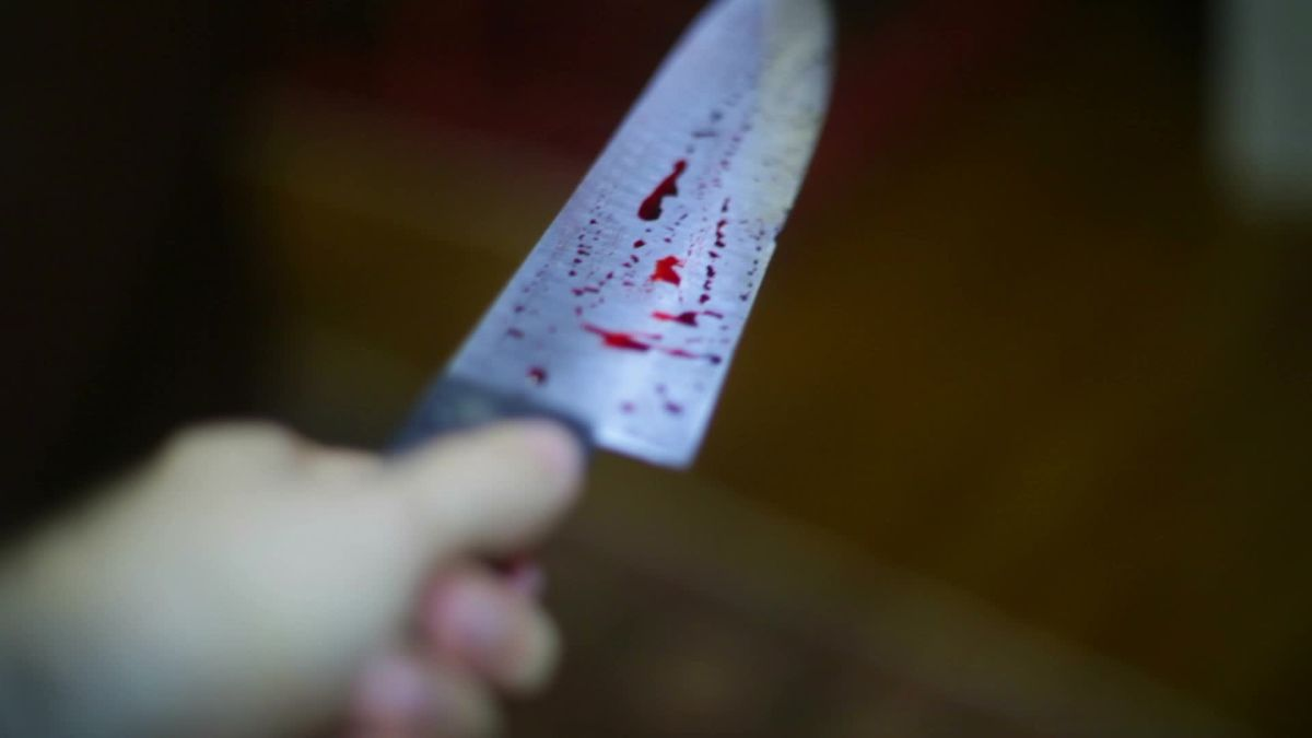 Она вообще ненормальная: женщина зарезала своего сожителя, а потом прожила с трупом месяц