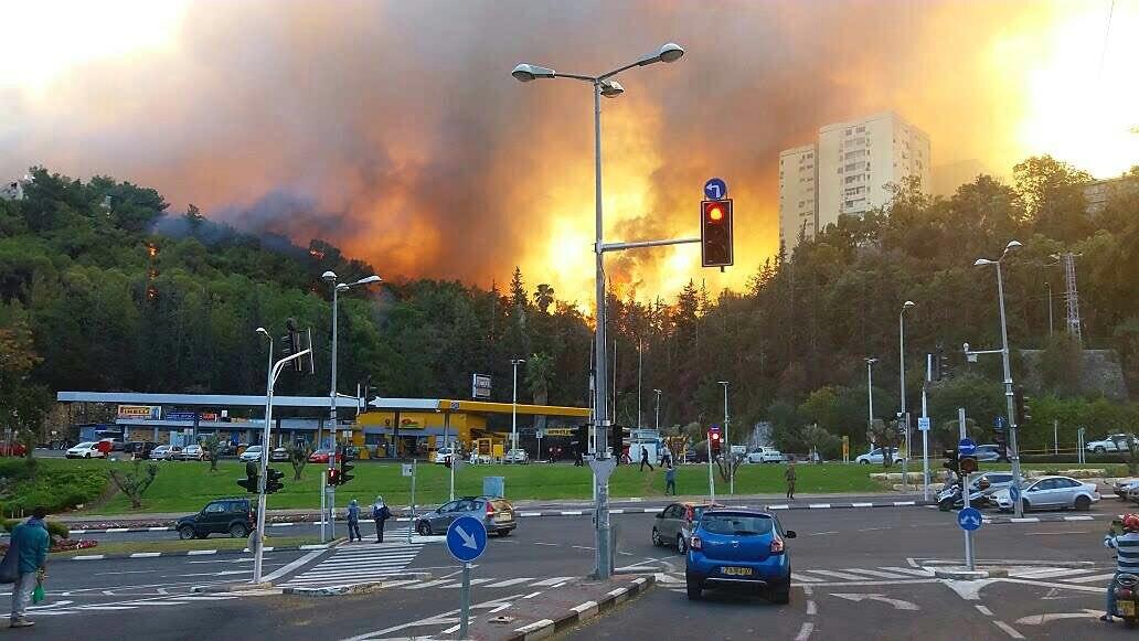 Масштабная трагедия в Израиле: из-за ужасногопожара пострадали уже более 100 человек. Эвакуировали 75 000 человек. Есть шокирующие ФОТО, ВИДЕО