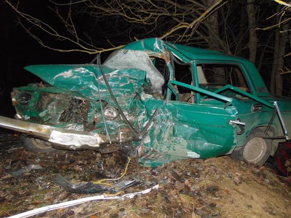 Жуткая авария на Житомирщине унесла жизни людей (ФОТО). Выжил лишь один человек