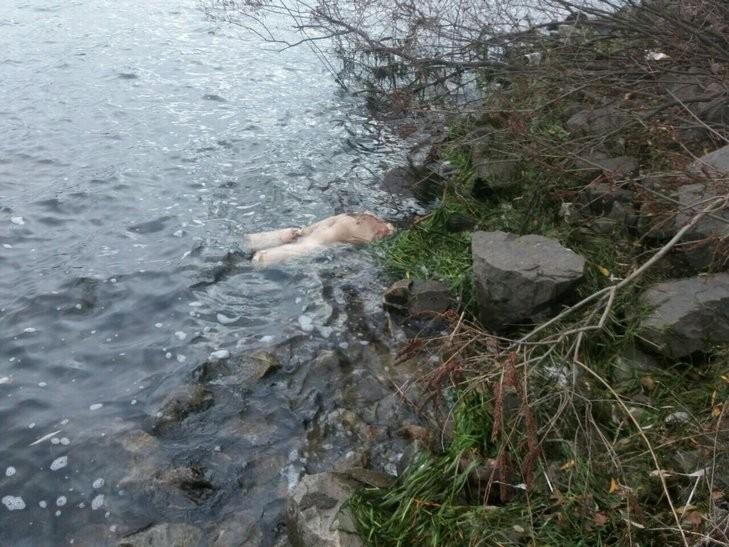 Кто на такое решился? Ужас в воде: найден труп мужчины с отрубленными конечностями и головой (ФОТО 18+)