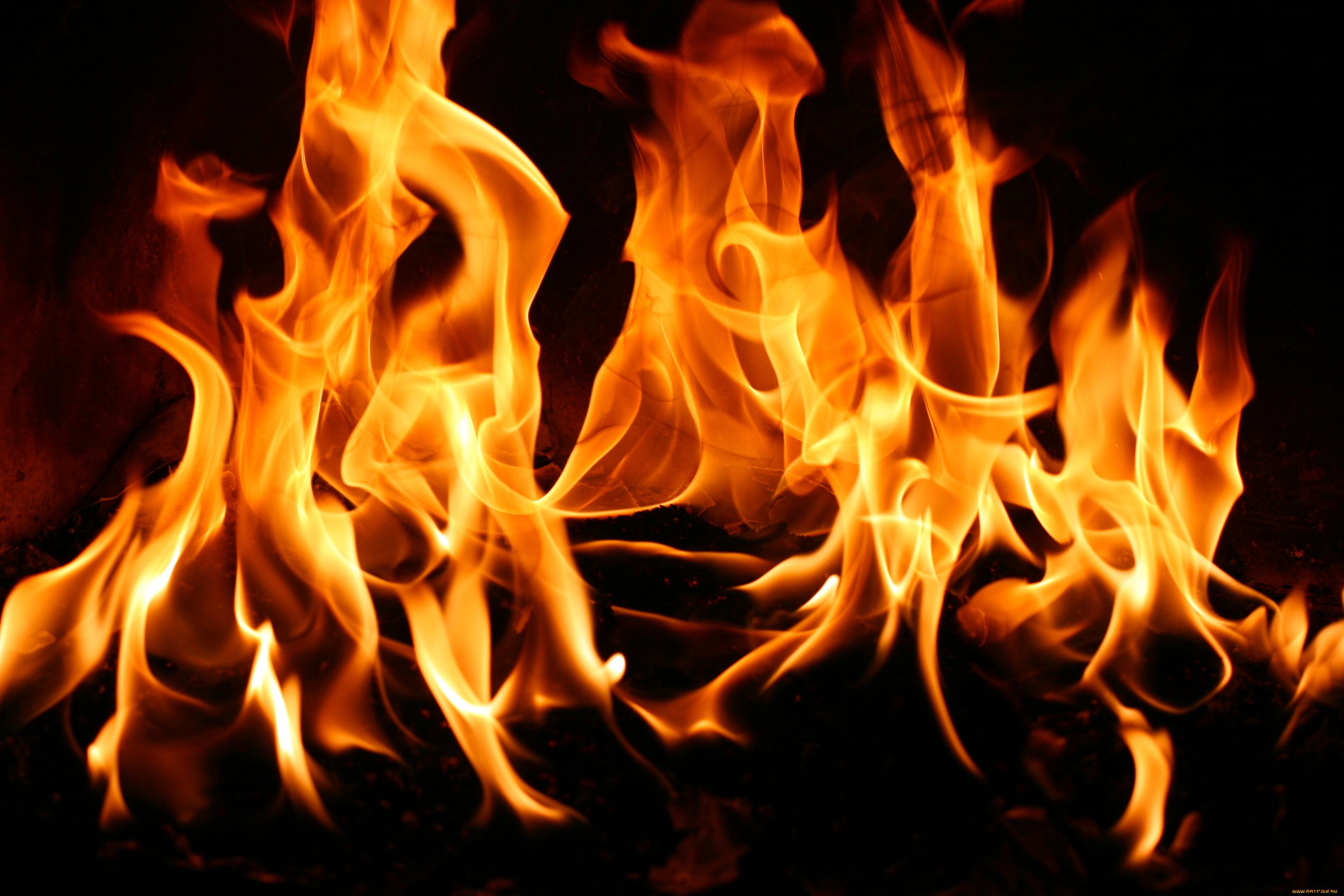 Селянка сожгла своего новорожденного ребенка, бросив младенца в топку печи