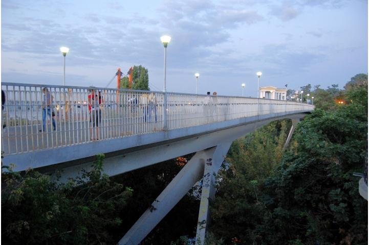 Знала, куда залезть: девушка, гуляя, упала с моста