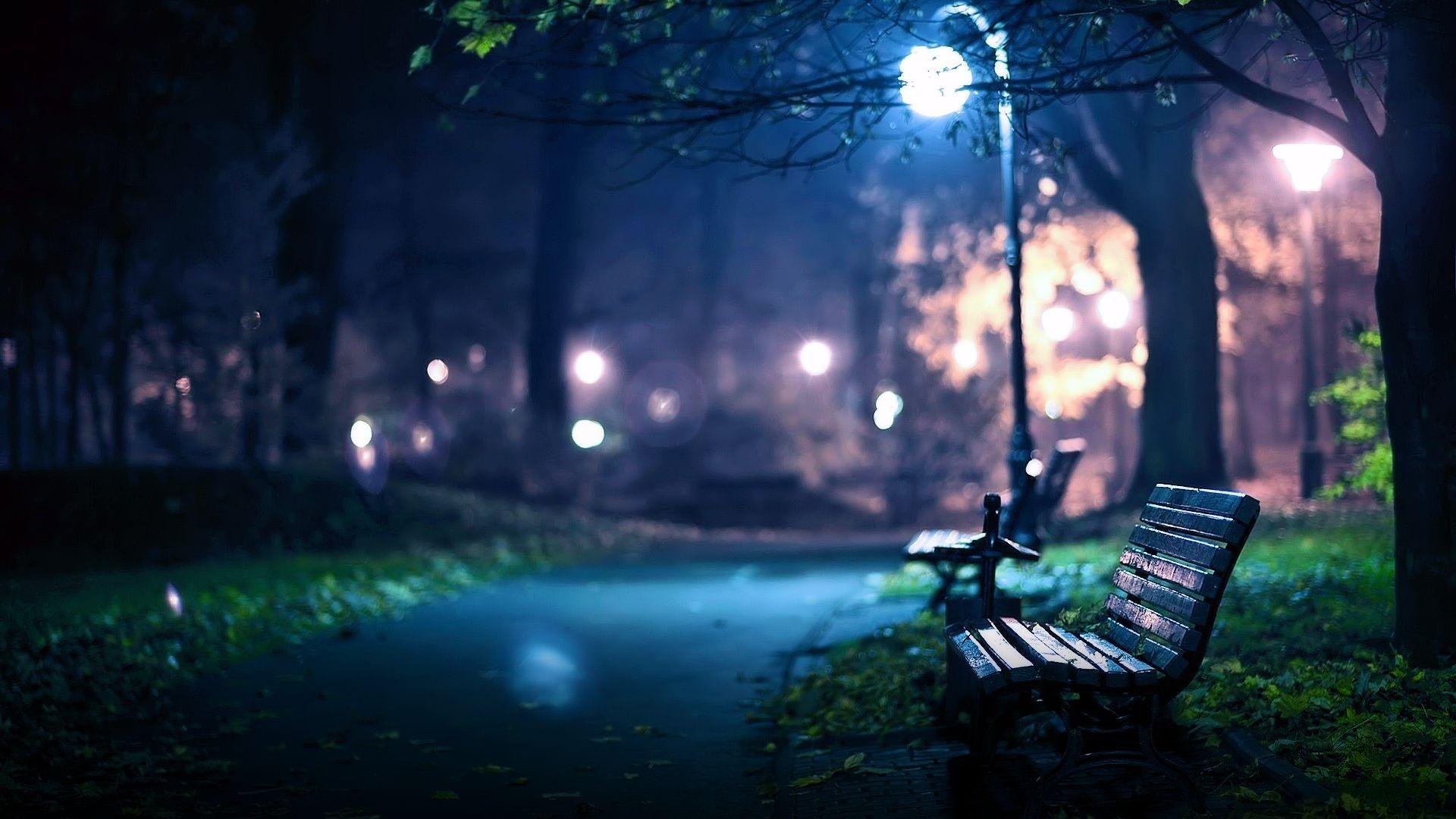 Транспортом, картинки красивая ночь в парке