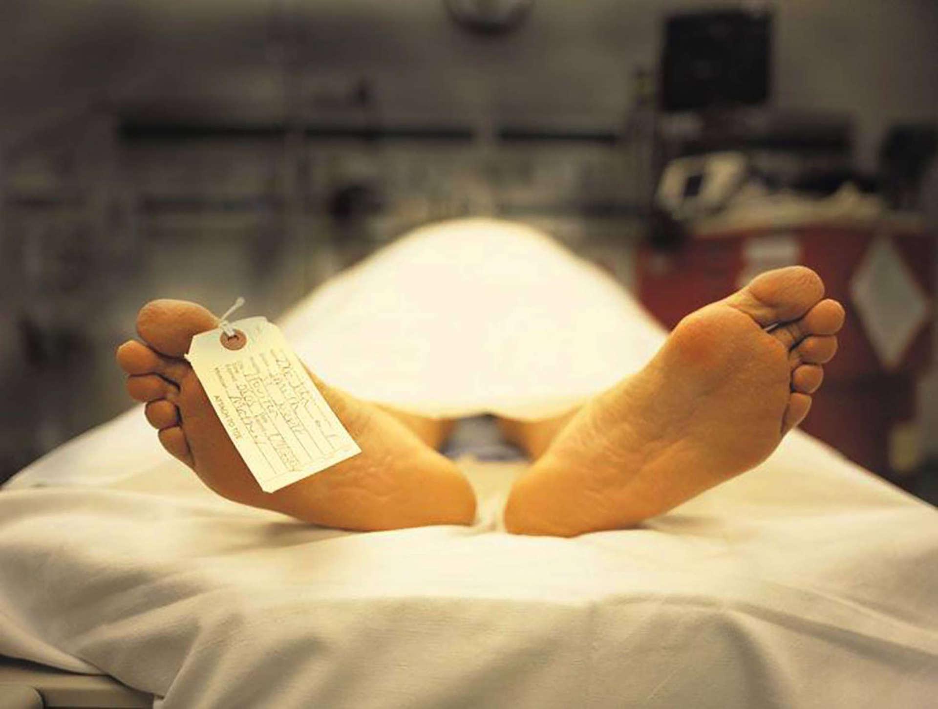 УЖАС! Труп лежал под больницей, отравляя людям жизнь