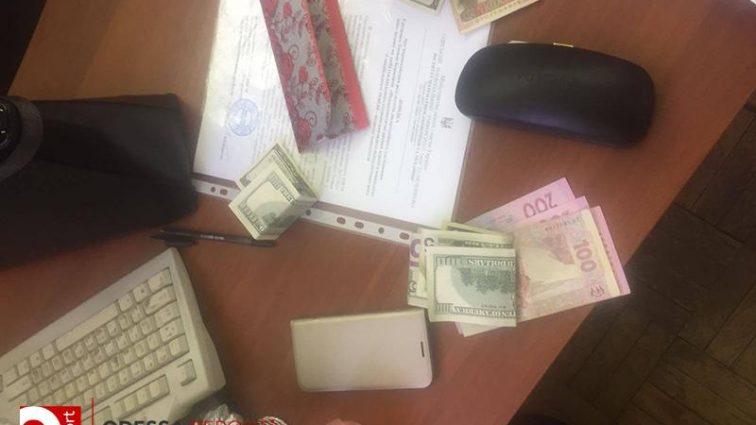 Замдекана ОНУ имени Мечникова попалась на взятке