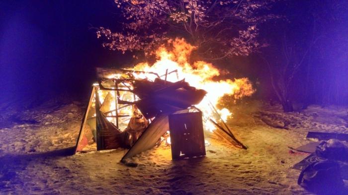 Обнаженный перформанс: голая художница сожгла собственные картины в Киеве (ФОТО +18)