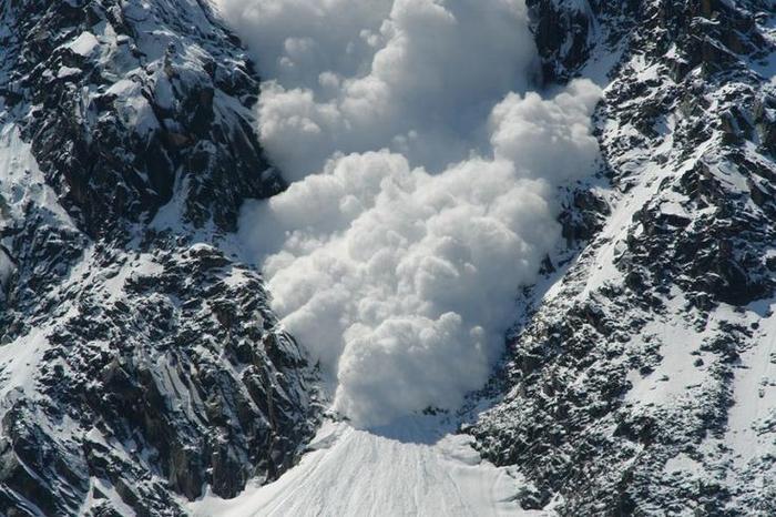В Карпатах массово сходят лавини. На их пути ничто не спаслось. Украинцев предостерегают быть очень осторожными