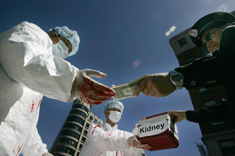 Доноры поневоле: на Николаевщине нашли фуру, набитую человеческими органами (Видео)
