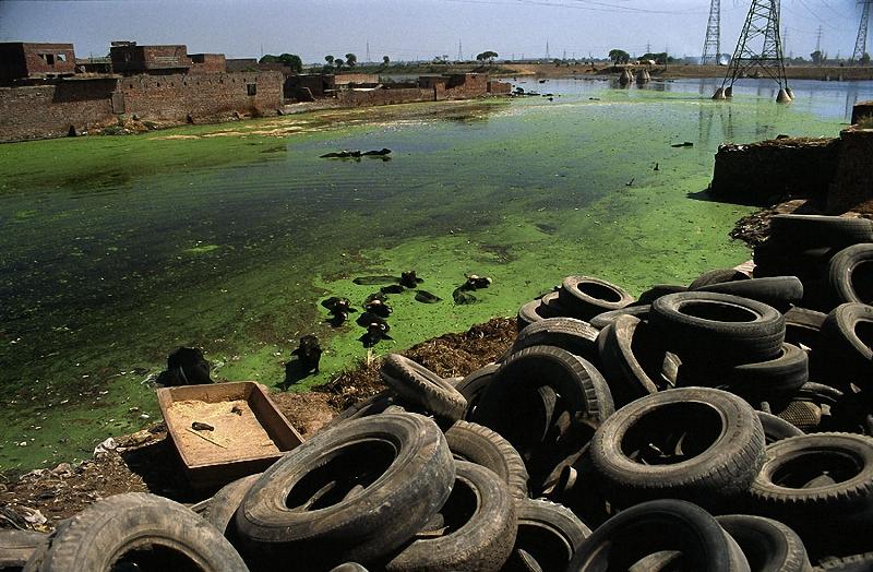 В Донецкой области существуют риски химического загрязнения — ОБСЕ