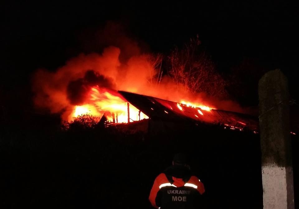 Как во Львове горело управления полиции (видео)