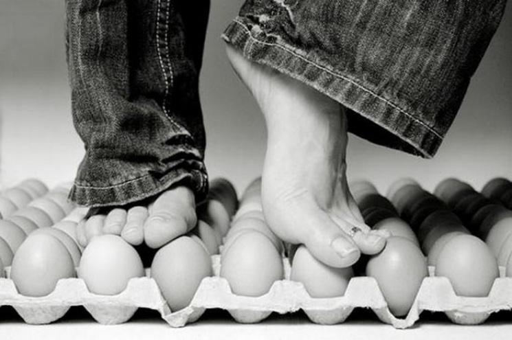 Украинцев призывают взяться за яйца