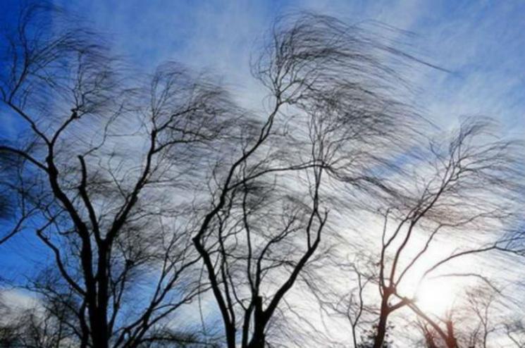 Киев на пороге шторма: Ожидается шквальный ветер и магнитная буря