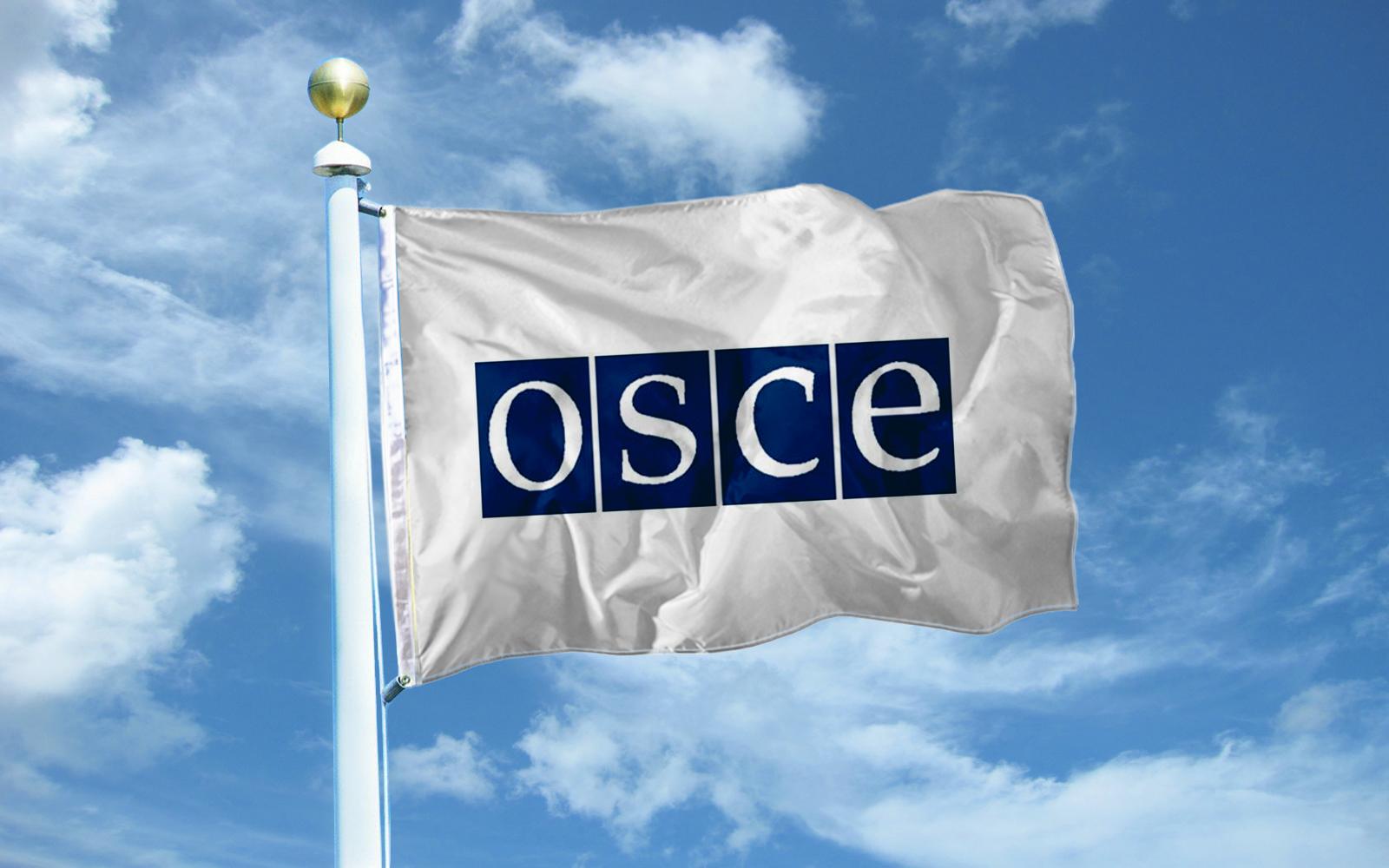 ОБСЕ не подтверждает спецоперации СБУ в ОРЛО