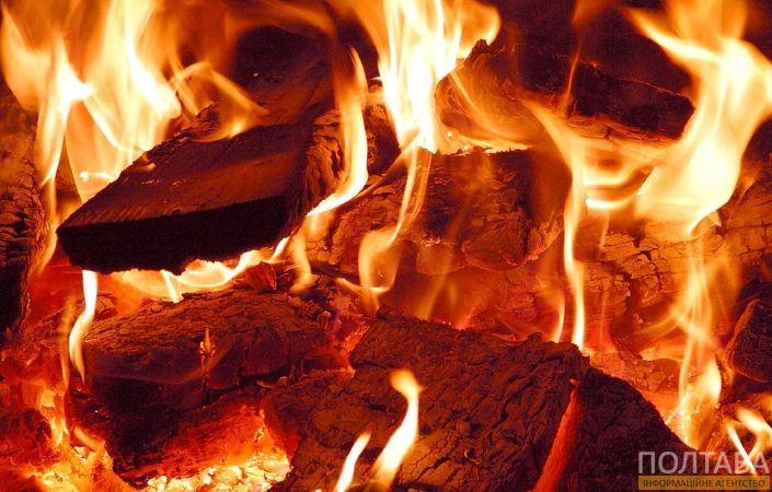 Люди, что с вами такое?!: горе-мать сожгла живьем собственного ребенка из-за работы. Такой жестокости еще не видели