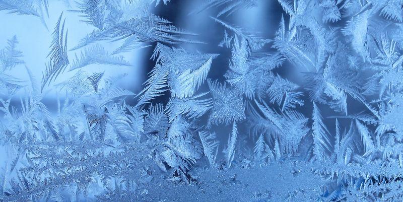 СРОЧНО!!! Трагедия на Херсонщине: Массовые смерти из-за морозов (ФОТО)