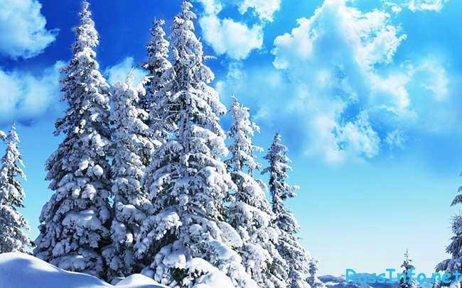 Такой погоды уже никто не ждет: какой будет последняя неделя зимы