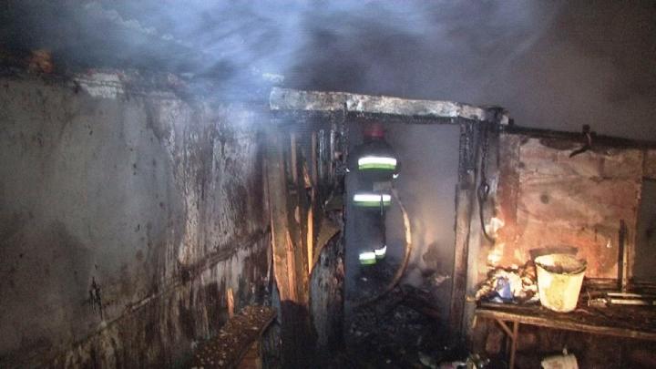 Огонь уничтожил все дотла: на Львовщине сгорел единственный в области приют для собак (ВИДЕО)
