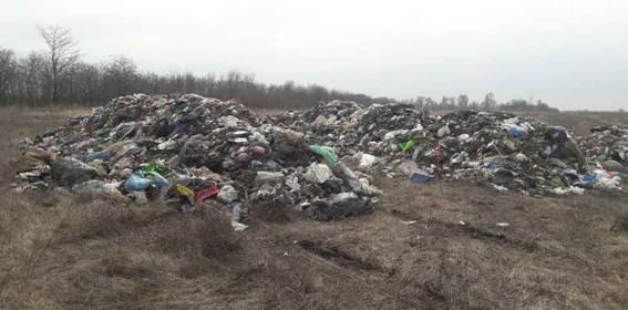 В связи с незаконным сбросом мусора, во Львове открыли более 10 уголовных дел