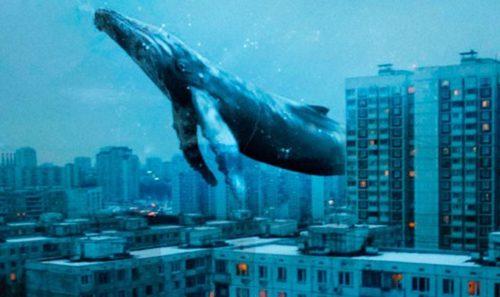 Сядьте, если стоите: Как мужчина из Закарпатья стал куратором игры «Синий кит» (фото)