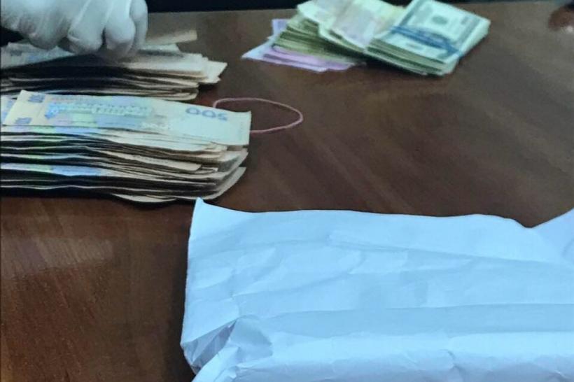 «Котлета» денег за украинский лес: взятка руководству лесхоза Черкас (ФОТО)