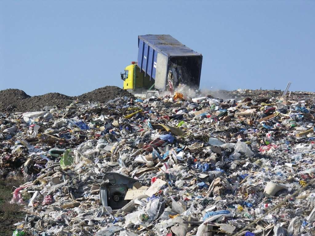Как мусором выкачивали деньги из львовского бюджета: афера с отходами