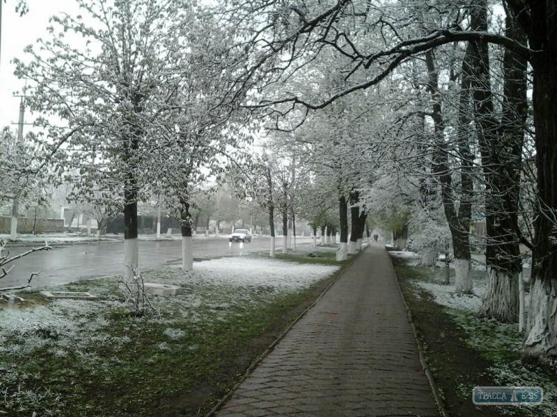 129460-sneg-vypal-v-konce-aprelya-v-odesskoj-oblasti-big