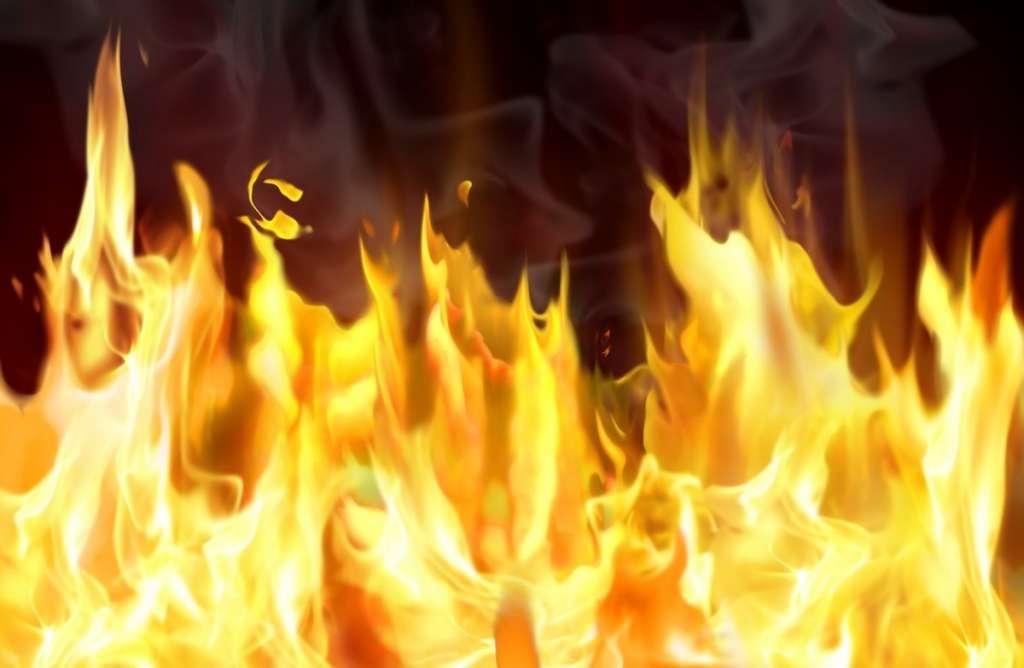 Экологи в панике: Масштабный пожар охватил Херсонщину