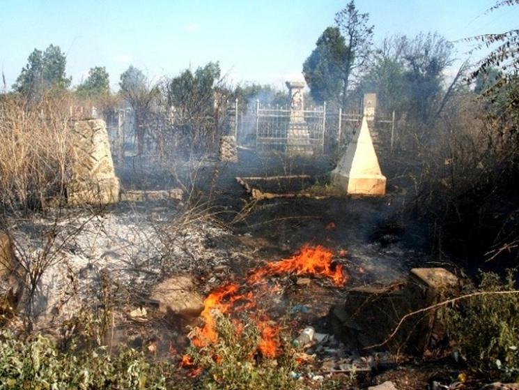 Который УЖАС! Неизвестные подожгли кладбище! В это трудно поверить!