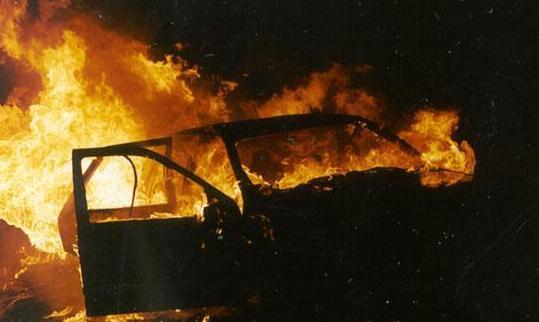 Активистке, которая боролась против вырубки леса сожгли уже второе авто! Детали наводят ужас!