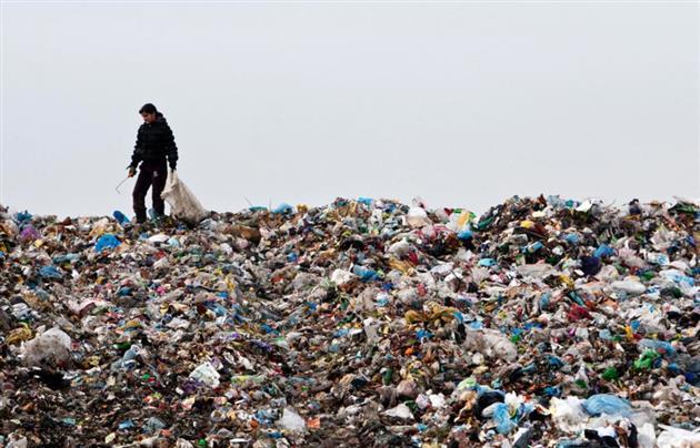 КАКОЙ СТЫД: Украину шокировала куча львовского мусора, которое перекрыло дорогу(ФОТО)